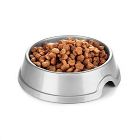 Dog-food-in-bowl