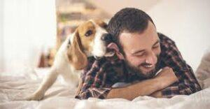 Dogs-Showing-Love-to-Owner