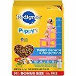 Pedigree-Dry-Puppy-Food