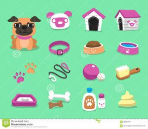 Dog-Esstential-Accessories