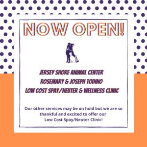 spay-neuter-clinic-now-open