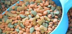 dry-dog-food-scoop