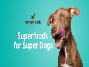Hungry-bark-logo