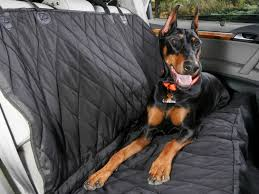 back-seat-hammock