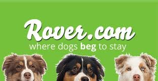 Rover-dot-com-label
