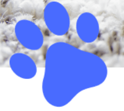 blue-paw-print