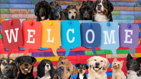 welcome-sign-with-dogs