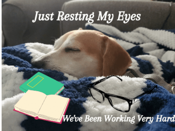 chance-sleeping-with glasses-books