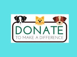 dogs-cat-donate