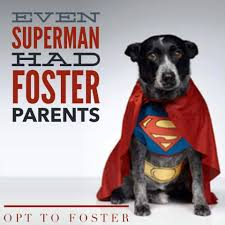 superman-had-foster-parents