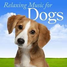 relaxing-music-for-dogs