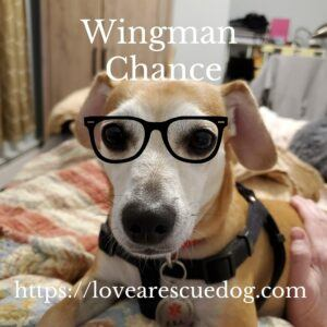 Chance-with-glasses