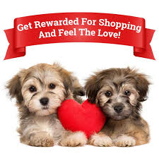 puppies-holding-red-heart