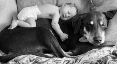 baby-bonding-with-rescue-dog