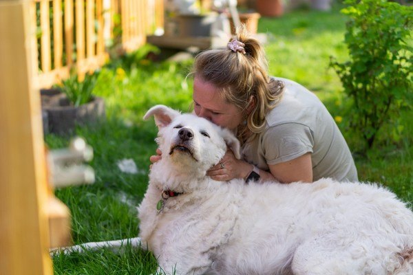 woman kissing white dog